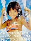 H Suntory - PNG, 100x131 pixels, 31.2 KB