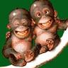 orangutanis - JPEG, 96x96 pixels, 20.3 KB
