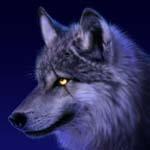 Lobo azul - JPEG, 150x150 pixels, 18.9 KB