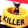 killer - JPEG, 96x96 pixels, 8.8 KB
