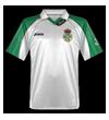 camiseta racing - PNG, 100x110 pixels, 13.7 KB