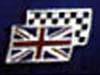 Banderas - JPEG, 100x75 pixels, 16 KB