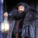 Hagrid - JPEG, 150x150 pixels, 9.6 KB