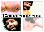 Camaron - JPEG, 149x109 pixels, 10.2 KB