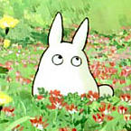 Chibi Totoro - JPEG, 145x145 pixels, 9.4 KB