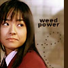 weed power - JPEG, 100x100 pixels, 30.4 KB