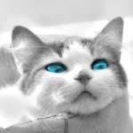 ojazos - JPEG, 150x150 pixels, 18.3 KB
