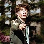 Harry (1) - JPEG, 150x150 pixels, 25.8 KB