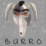 Burro - JPEG, 150x150 pixels, 6.1 KB
